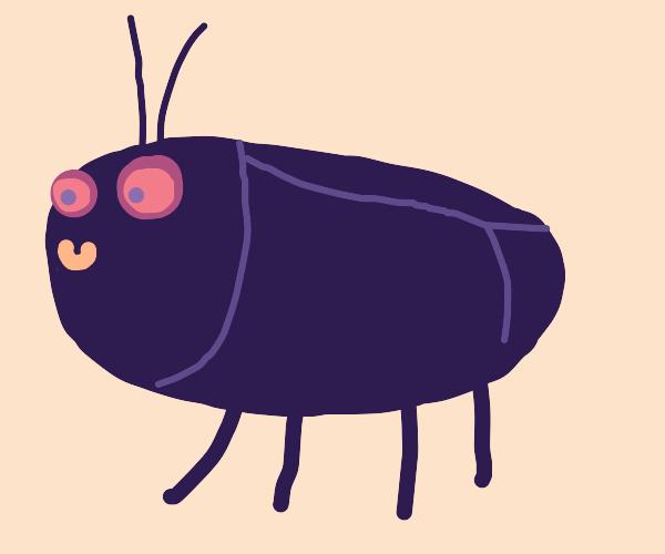 A happy little beetle...
