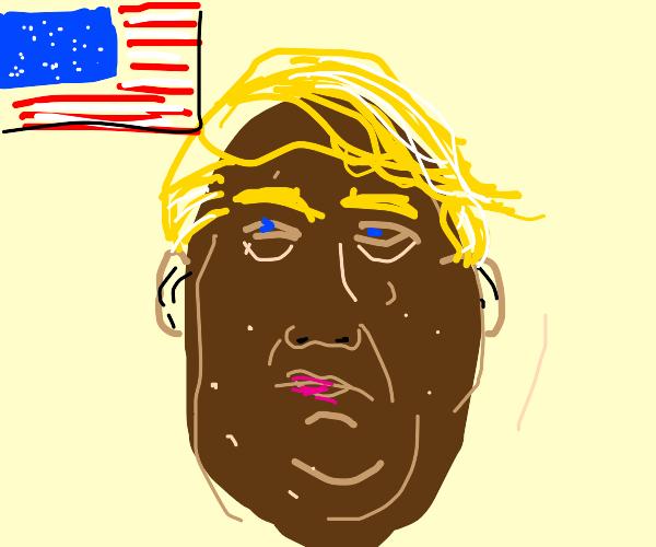 Potato Donald Trump
