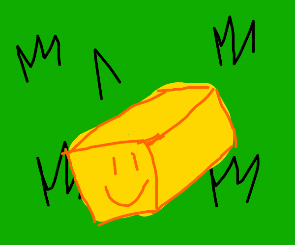 a block of butter happily sitting on grass