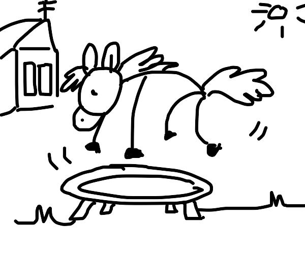 a jumping stick horse