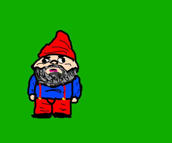 Cartoon Gnome