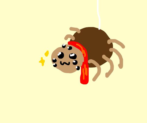 Spider wearing red scarf