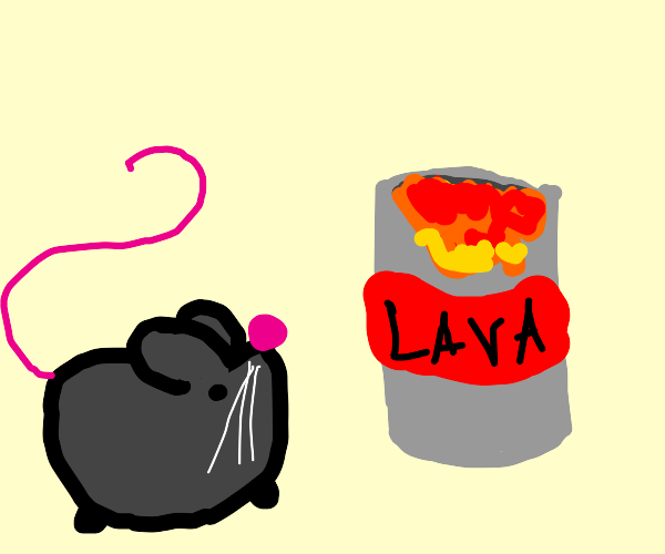 rat looks at a can with lava in it