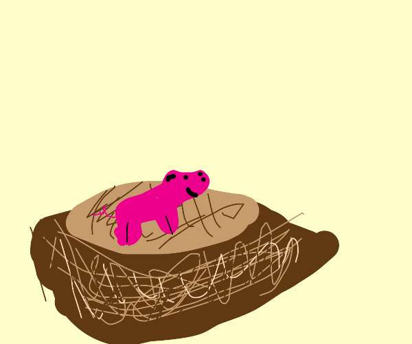 Piglet in a Nest