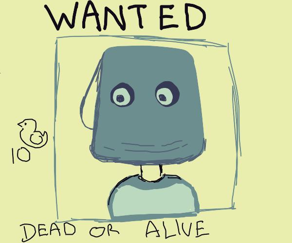 "wanted""bucket-boy""poster (10k ducks reward)"