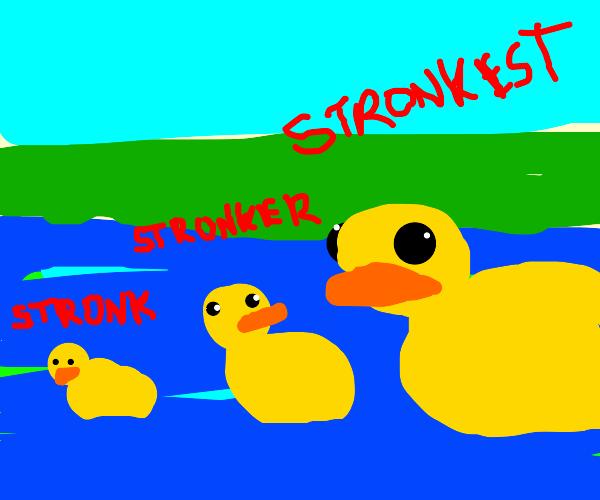 Very stronk duck