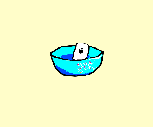 iPhone in a Bowl