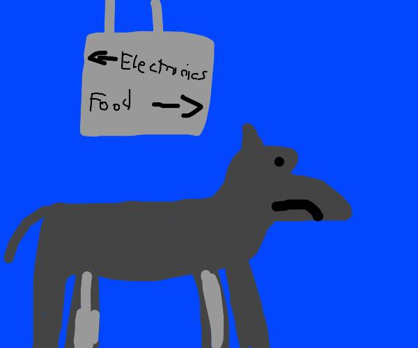 Mule in a Store