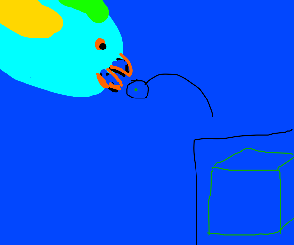 Parrotfish eating a Square