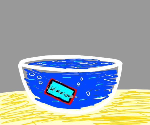 Phone in bowl of water