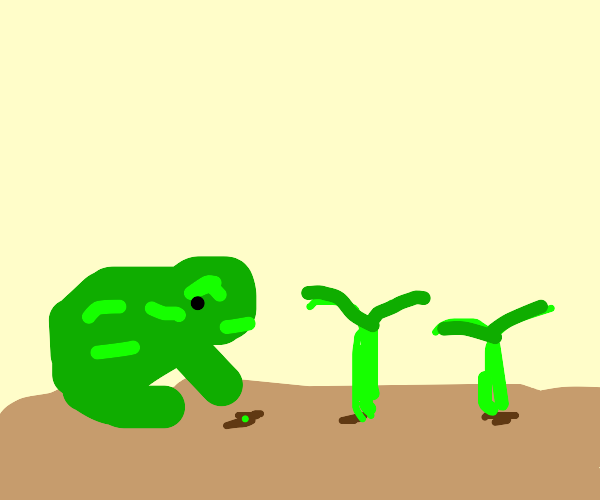 Frog Planting