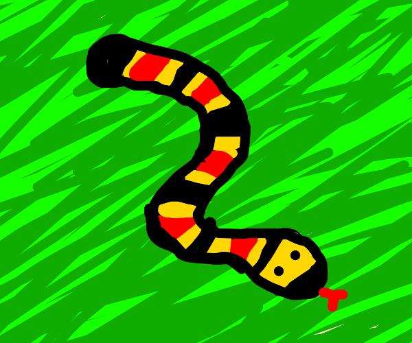 Snake on grass