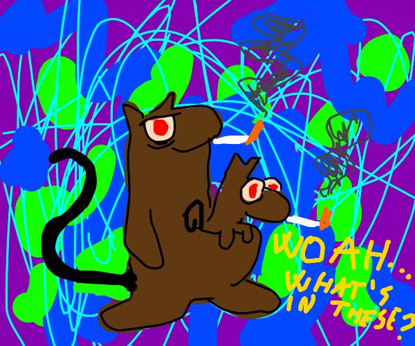 Psychedelic Marsupiel