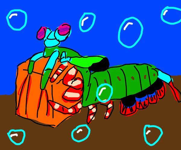 Shrimp carrying a Square