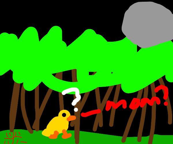 duck is lost in the woods at night