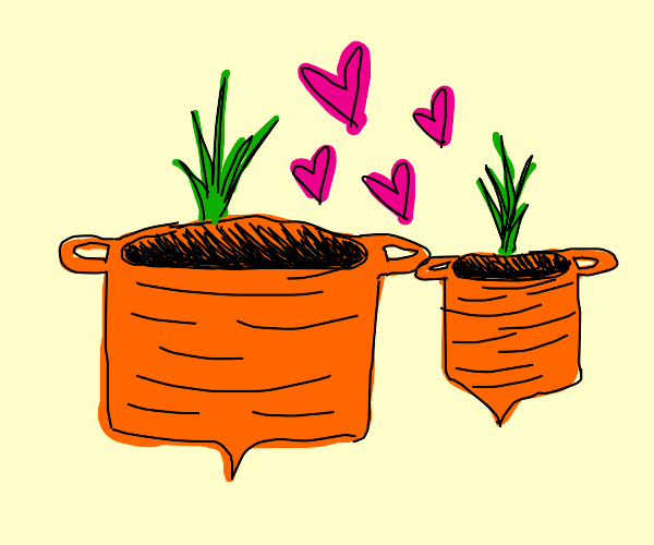 two carrots shaped like pots loving eachother