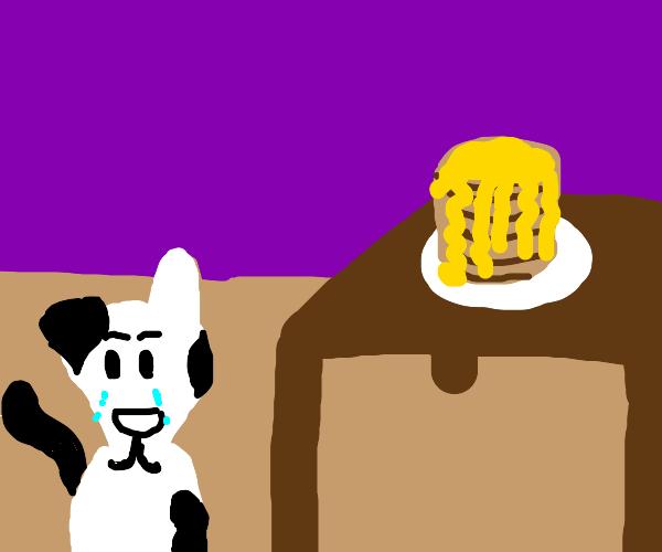 Dog sad he doesn't get pancakes