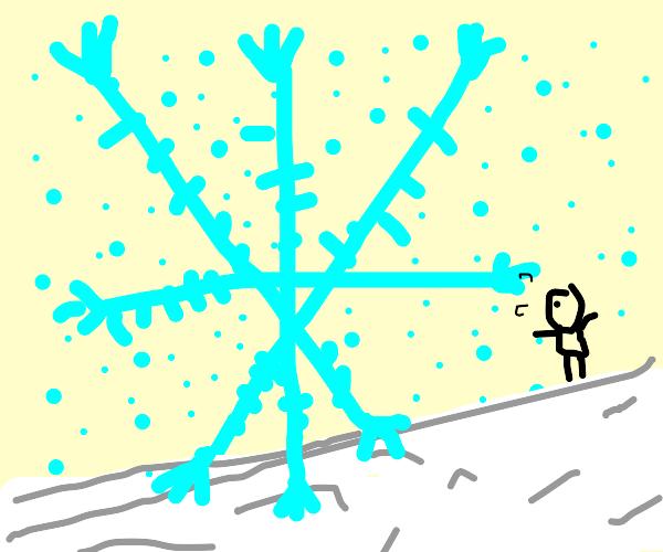 A giant snowflake :)
