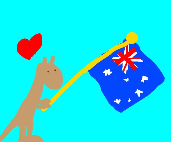 Patriotic kangaroo