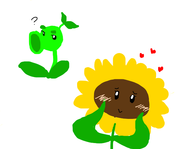 Sunflower blushes when she sees her boyplant