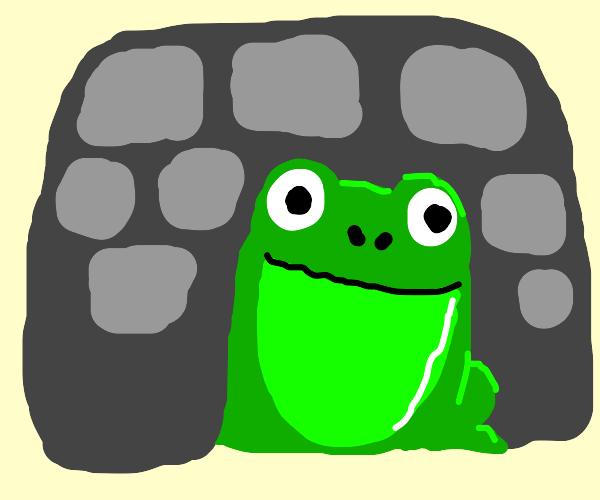Frog in a Castle
