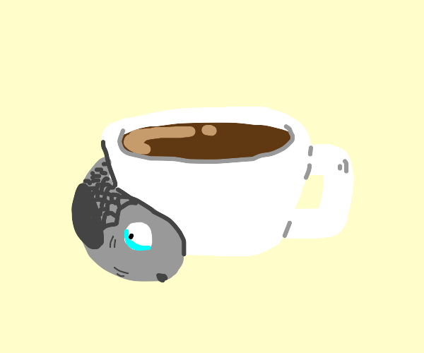 a coffee with a fish