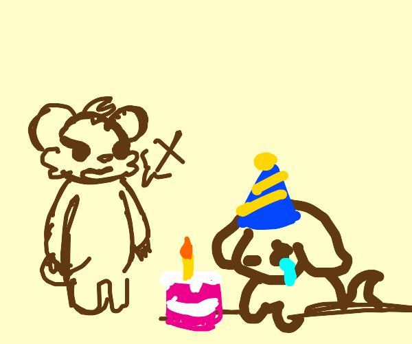 Bear doesnt want to celebrate a dogs bday