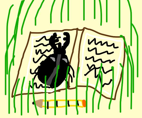Beetle Writing