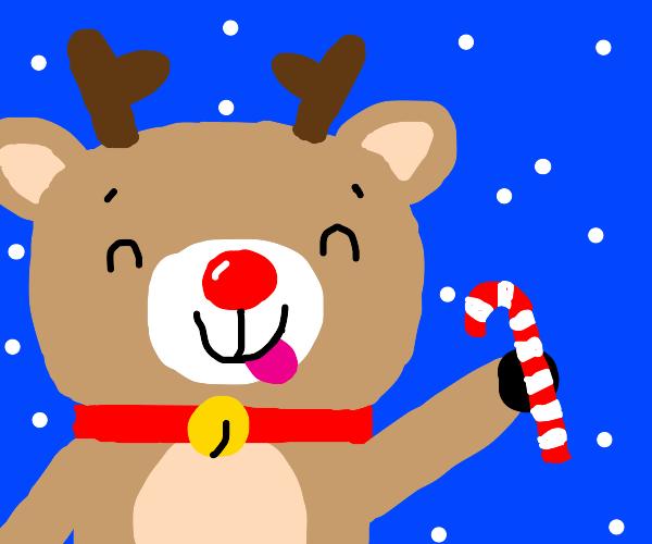 Rudolph eats candy?