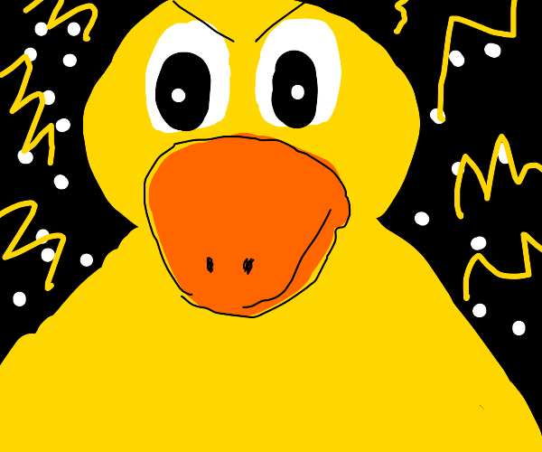 the final duck