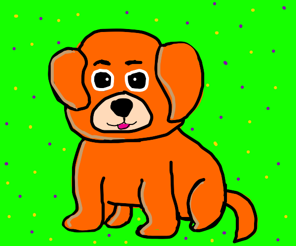 Orange pup with a cute face