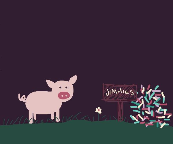 Piggy runs through field to get his jimmies