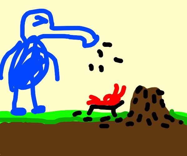 Anteater Sneezing