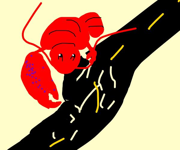 lobster breaking the road
