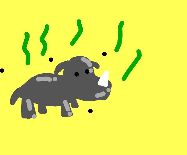 Fat rhino is smelly
