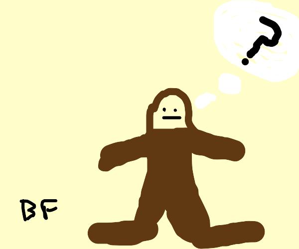 Bigfoot Thinking