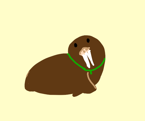 Walrus with green necklace