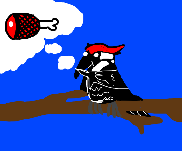 Woodpecker imagining Ham