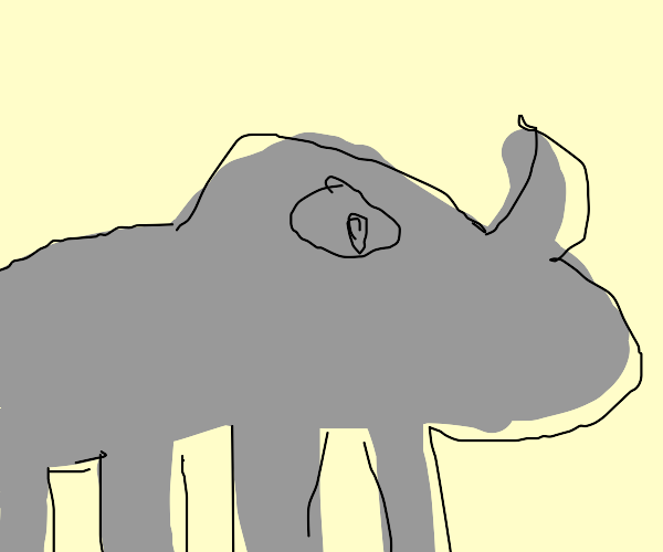a rhino looking to the right