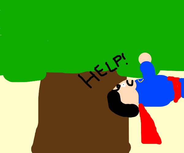 Superman stuck in a tree