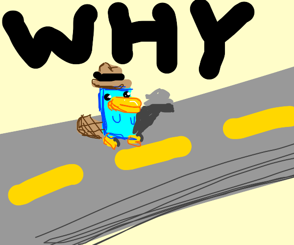 Why did the platypus cross the street?