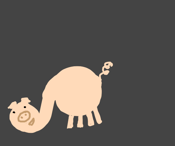 Pig with elephant-trunk neck