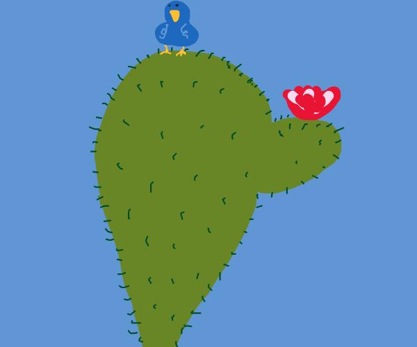 Bird perched atop a flowering cactus