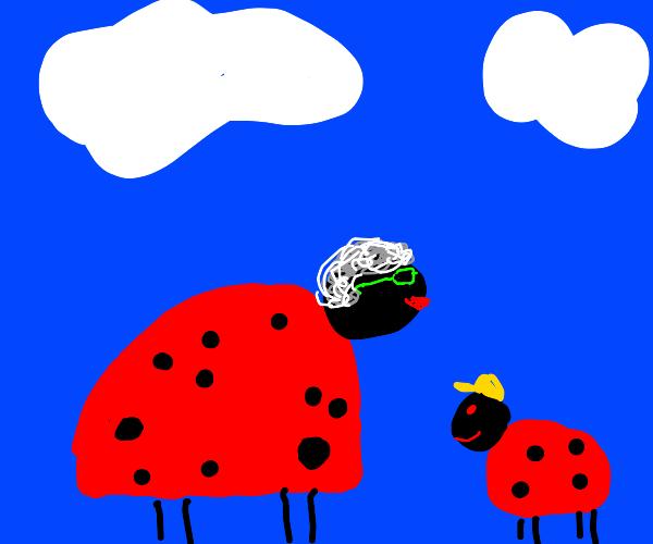 old ladybug and grandson ladybug