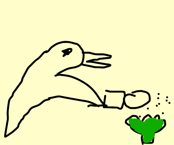 duck salts his broccoli