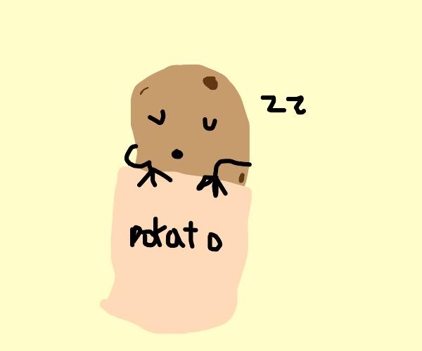 Potato man in a potato sleeping bag