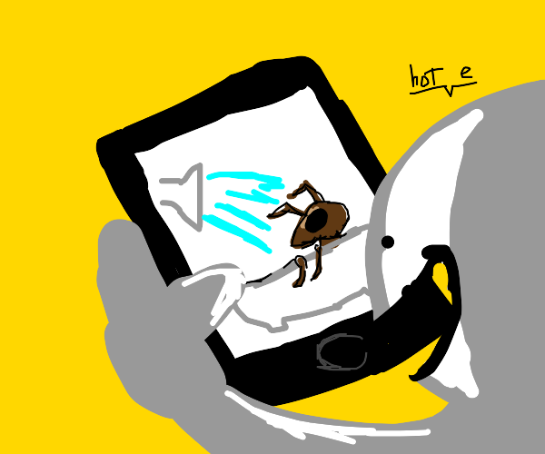 Watching an ant shower on an iPhone