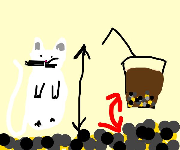 Longcat in boba