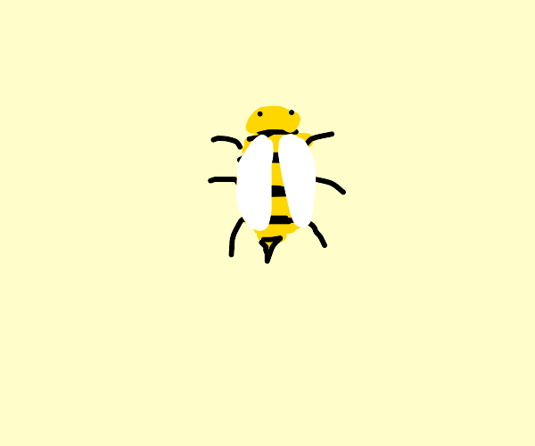 The cutest and fuzziest bee