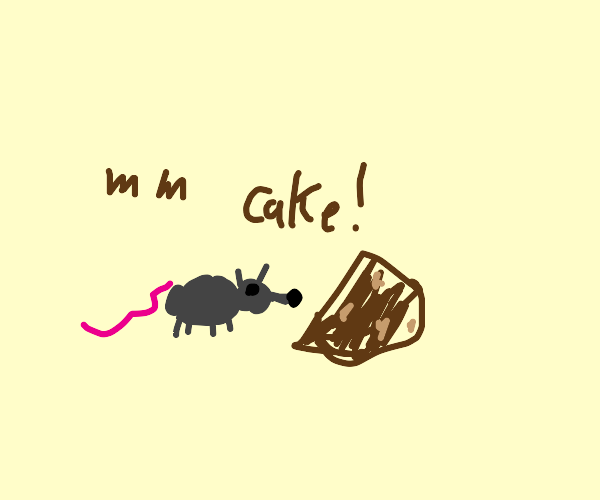 Mouse finds chocolate cake, eats it